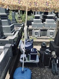昨日の墓掃除
