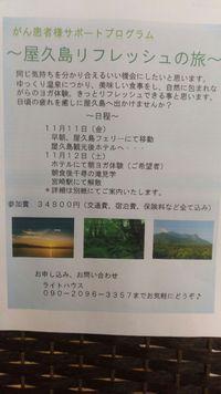 今年は屋久島です!