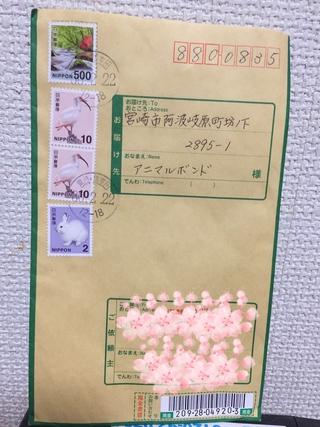 2018年2月25日譲渡会のご報告 阿波岐原森林公園