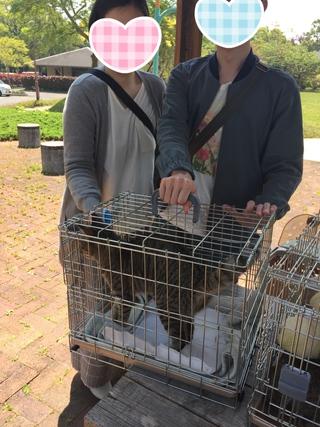 2019.4.21譲渡会のご報告 阿波岐原森林公園