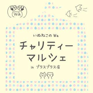 PURA-VIDA様大イベント参加のお知らせ