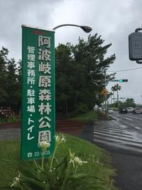 2018年6月17日譲渡会のご報告 阿波岐原森林・・・