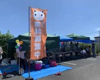 2019.9.8PURA-VIDA譲渡会のご報告