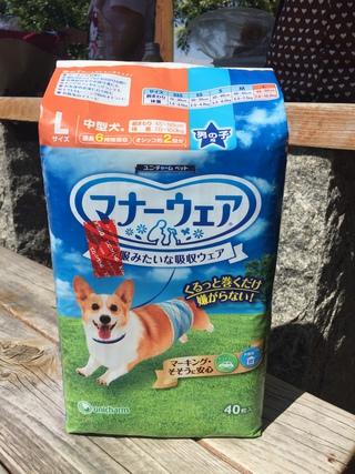 2018年9月23日譲渡会のご報告 阿波岐原森林公園