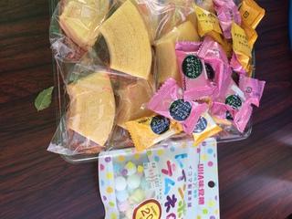 2019.10.13PURA-VIDA譲渡会のご報告とお礼