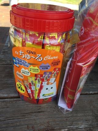 2018年3月11日譲渡会のご報告  阿波岐原森林公園