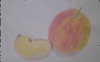 りんご241117