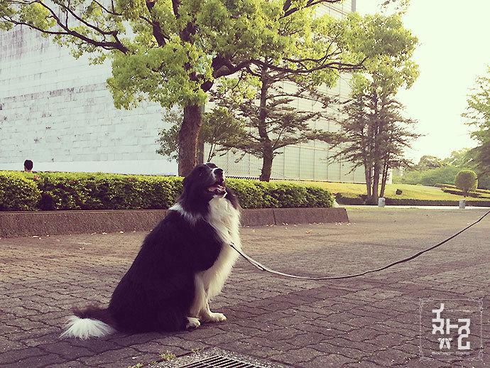 宮崎文化公園にて:ミシェル坊