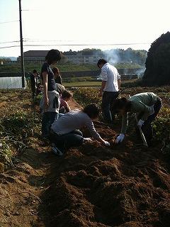 ★第3回プログラム★春野菜収穫とヘルシーウォーキング体験