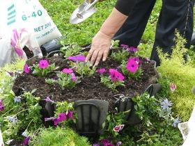 まちなか花いっぱい寄せ植え体験