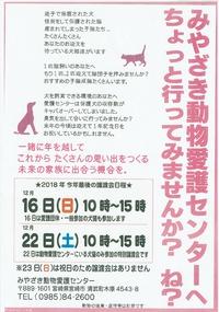 12月22日はみやざき動物愛護センターへ