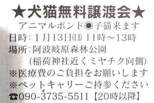 週末の譲渡会情報(1月13日)