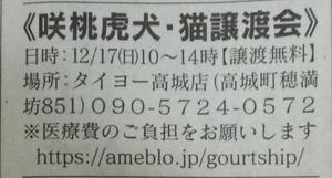 週末の譲渡会情報♪(12月17日)