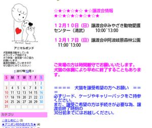 週末の譲渡会情報♪(12月10日)