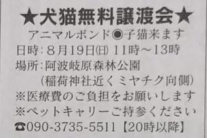 週末の譲渡会情報(8月19日)
