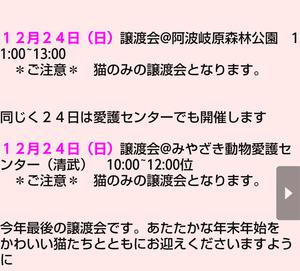 週末の譲渡会情報♪(12月24日)