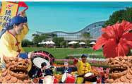 今日は、沖縄フェスティバル in フローランテ宮崎