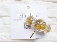 『shiichan』さんの作品