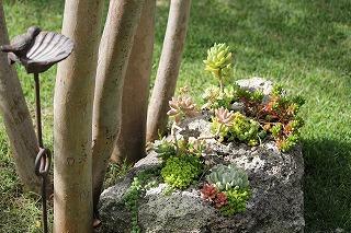 雑木の庭!