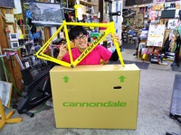商品情報~2019 CANNONDALE CAAD12 COLORS FRAMESET~
