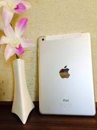 メチャ便利!!iPadmini