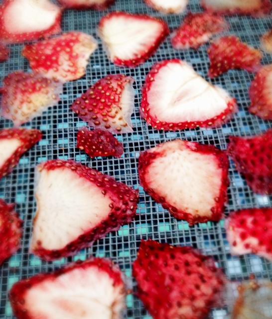 イチゴのドライフルーツ