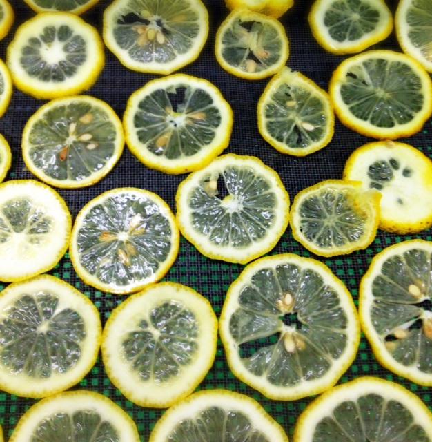 レモンの乾燥。