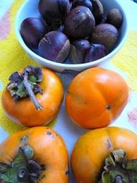 オレンジ色を食べる