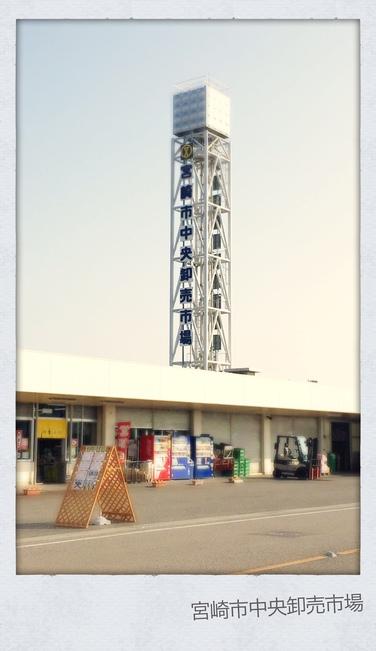 宮崎市中央卸売市場