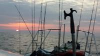 タイラバで始めて大漁