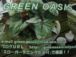 グリーンオアシス