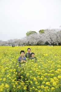 「ゆっ旅宮崎」 春の西都原古墳群と農村の暮らし体験ツアー