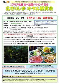 北きりしま ホタル鑑賞会(6/4)