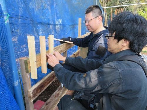 ヂゴンの巣、改修工事
