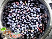 苑内で収穫したブルーベリーでジャムを作り・・・