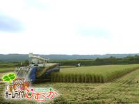 今年も新米が収穫できました。
