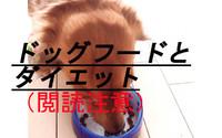 ドッグフードとダイエット(閲読注意)
