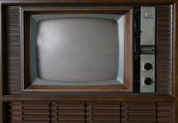 犬はテレビを見るのか?