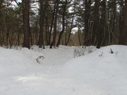 雪は溶けかけた頃が危険