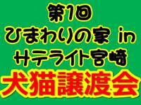 <譲渡会御礼と次回開催のお知らせ>