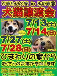 <ひまわりの家 in みたま園犬猫譲渡会>
