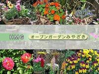 ブログを始めました。 2011/06/14 20:12:07