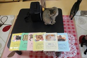 カフェ「猫ものがたり」に行ってきました。