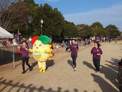 第34回田野町マラソン大会  【ファン拡大事業】