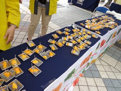 京セラドーム大阪「みやざきスペシャルゲーム」