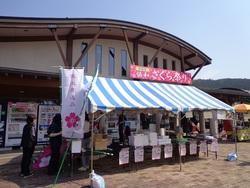 秋田県道の駅「協和」さくら祭りへの参加(4/29~30)