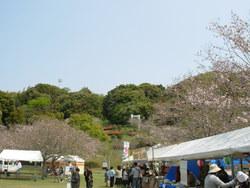 佐土原町 久峰公園さくら祭り