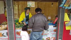 こどもの国 ANAホリデイ・インリゾート宮崎 秋の収穫祭