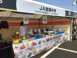 WBC侍JAPAN強化合宿開始!