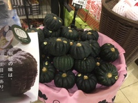 JA宮崎中央 『やまいき黒皮かぼちゃ』試食宣伝活動